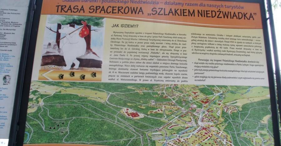 Szlak Niedźwiadka w Polanicy - zdjęcie