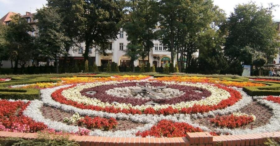 Zegar kwiatowy w Słupsku - zdjęcie