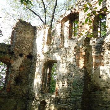 Rybnicki zamek.