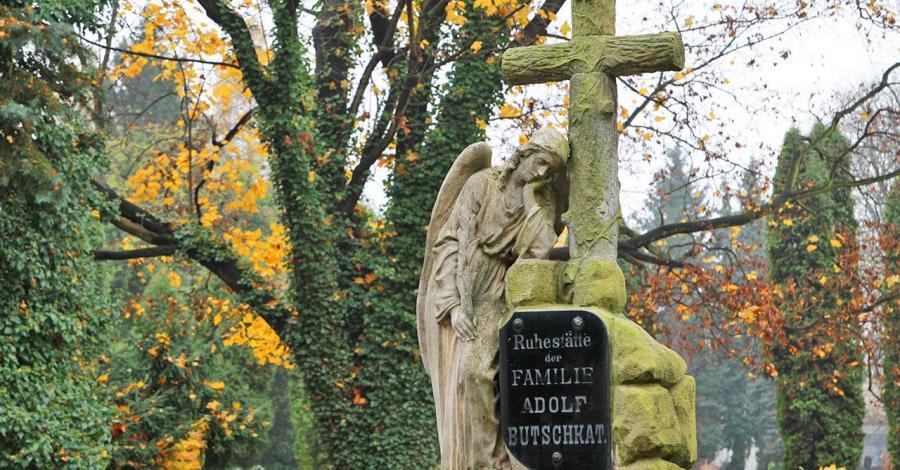 Stary cmentarz w Łodzi - zdjęcie