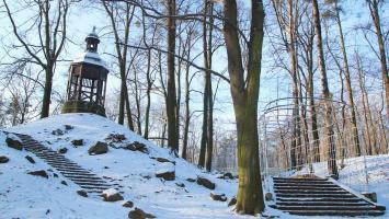 Zimowy park w Tarnowskich Górach - zdjęcie