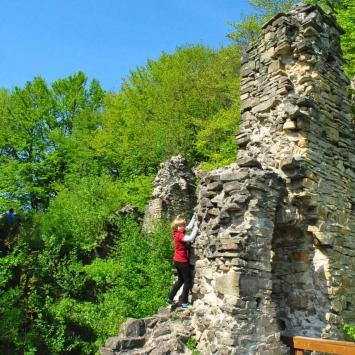 Zamek Sobień - zdjęcie