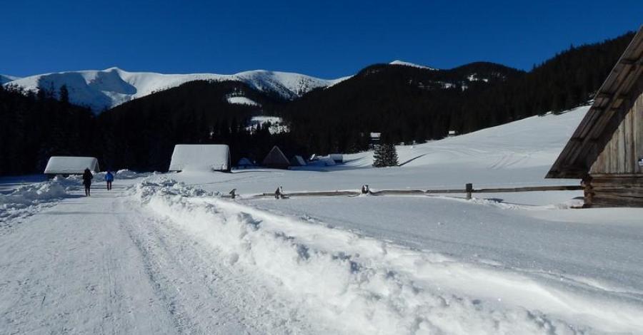 Zimowy weekend w Dolinie Chochołowskiej - zdjęcie