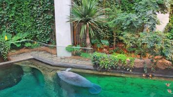 Zoo i Afrykarium - zdjęcie