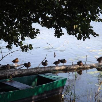 Jezioro Niskie Brodno