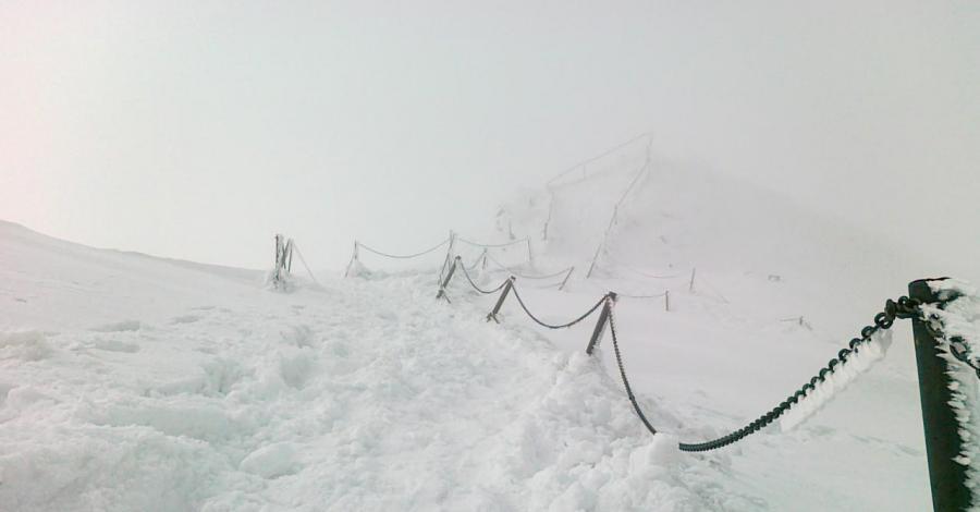 Śnieżka zimą - zdjęcie