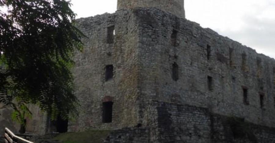 Zamek Lipowiec - zdjęcie