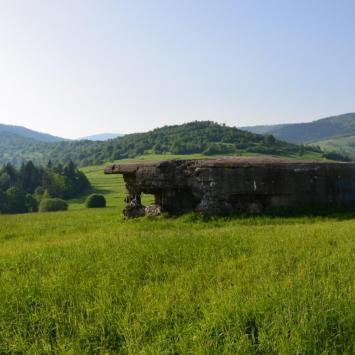 Fort Wyrwidąb w Węgierskiej Górce