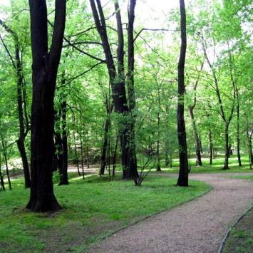 Park Schona w Sosnowcu