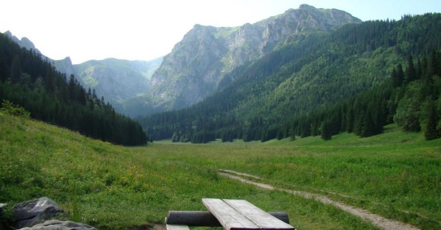 Dolina Małej Łąki w Tatrach - zdjęcie