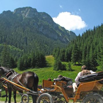 Dolina Kościeliska w Tatrach - zdjęcie