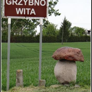 Grzybno koło Chełmży