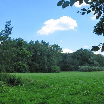 Park Krajobrazowy w Henrykowie - zdjęcie
