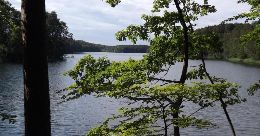 Jezioro Mieliwo - zdjęcie