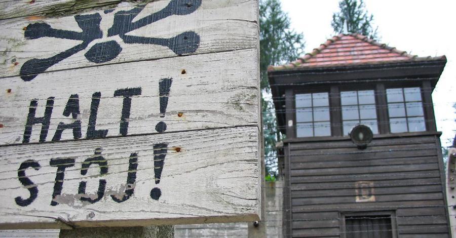Obóz Auschwitz, Anna Piernikarczyk