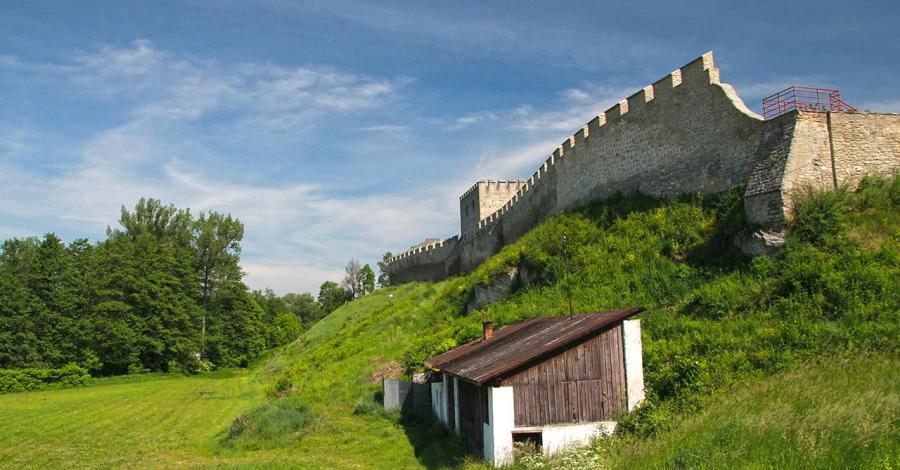 Mury obronne w Szydłowie, Anna Piernikarczyk