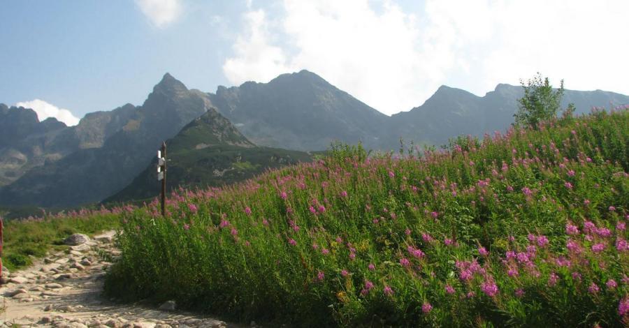 Dolina Gąsienicowa - zdjęcie