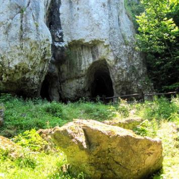 JURA- Jaskinia Wierzchowska, Dolina Kluczwody i Wąwóz Podskalński