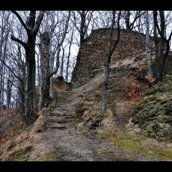 Borowa 853 m n.p.m.
