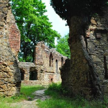 Zamek Stary Książ w Wałbrzychu