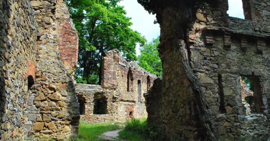 Zamek Stary Książ w Wałbrzychu - zdjęcie