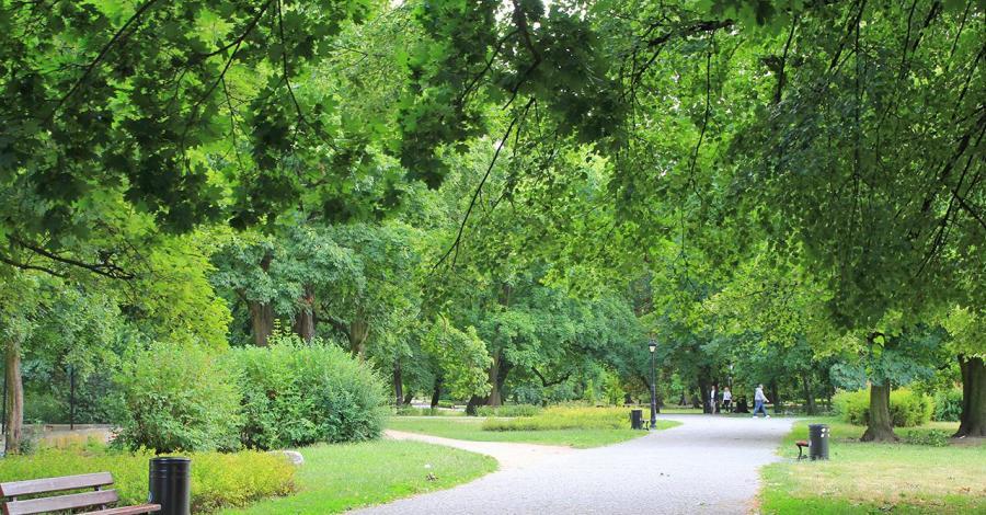 Park miejski w Kaliszu - zdjęcie