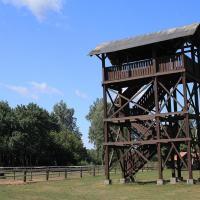 wieża widokowa na bociany i konie