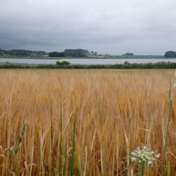 Pojezierze - Mayor Polonia - kraina tysiąca  jezior i pieknych krajobrazów.