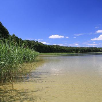 Jezioro Dręstwo na Mazurach
