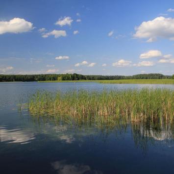 Jezioro Studzieniczne, Anna Piernikarczyk