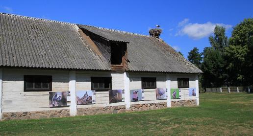 Europejska Wieś Bociania - zdjęcie