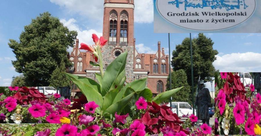 Grodzisk Wielkopolski, miasto z zyciem - tradycje i nowoczesność . - zdjęcie