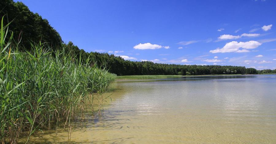 Jezioro Dręstwo na Mazurach - zdjęcie