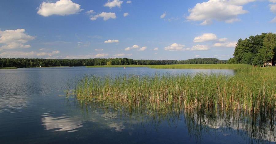 Jezioro Studzieniczne - zdjęcie