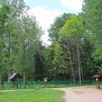 Białowieża Rezerwat Żubrów