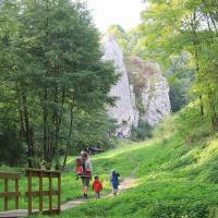Dolina Bolechowicka