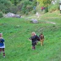 Kolejny pies do zabawy :)