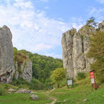 Brama Bolechowicka na Jurze