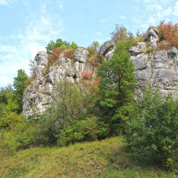 Zamek w Dolinie Kluczwody