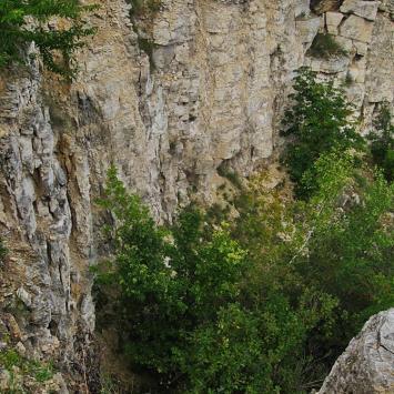 Kamieniołom Złota Góra w Częstochowie