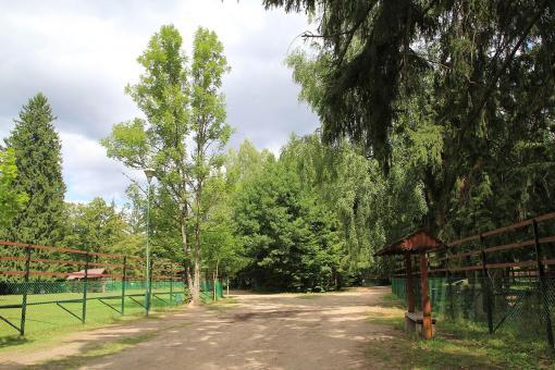 Rezerwat Pokazowy Żubrów Białowieża