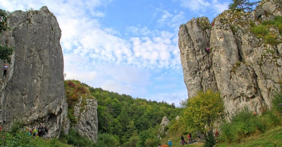 Dolina Bolechowicka, Anna Piernikarczyk