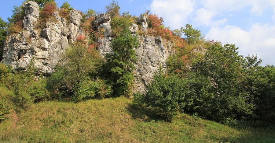 Dolina Kluczwody - zdjęcie