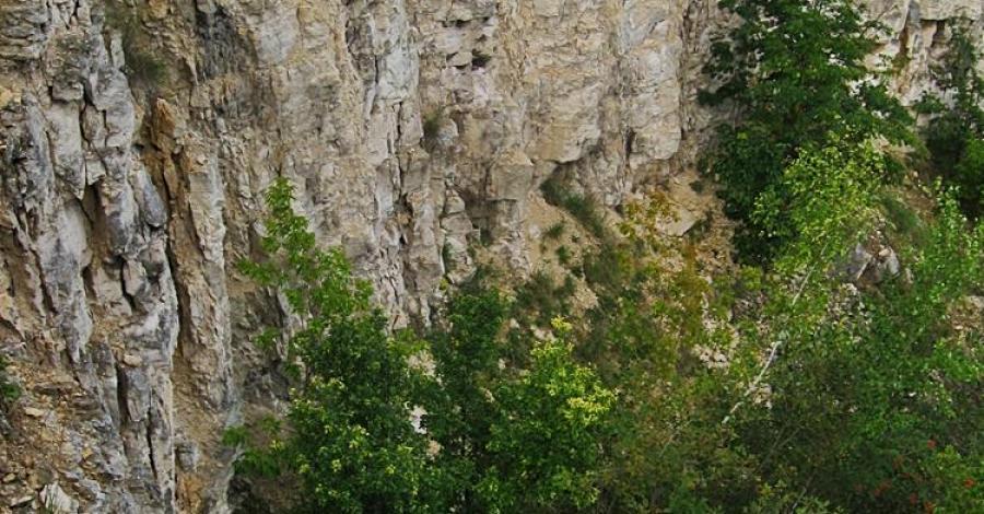 Kamieniołom Złota Góra w Częstochowie - zdjęcie