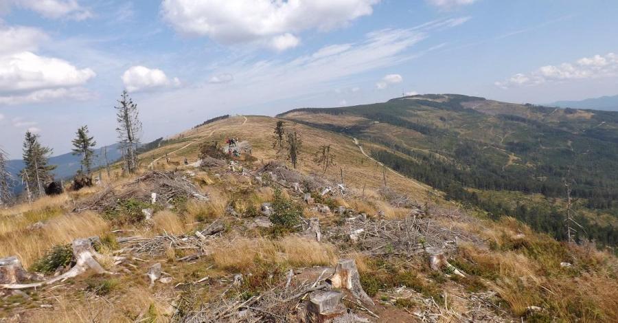 Malinowska Skała w Beskidzie Śląskim - zdjęcie
