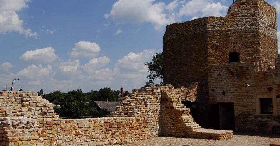 Zamek w Inowłodzu - zdjęcie