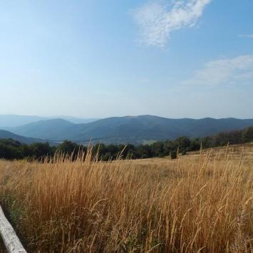 Wycieczka na Tarnicę w Bieszczadach