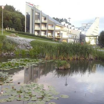 Oczko Wodne w Ustroniu, mokunka