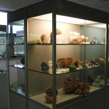 Muzeum Ziemi w Poznaniu