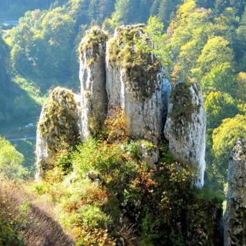 Jura: Ojców – Dolina Prądnika (góra Koronna, wzgórze Okopy)